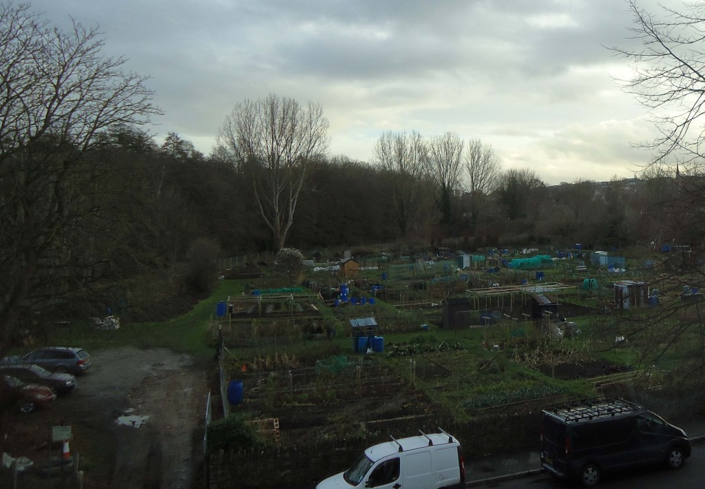 View of Welshmill Allotments from the new Rossetti House