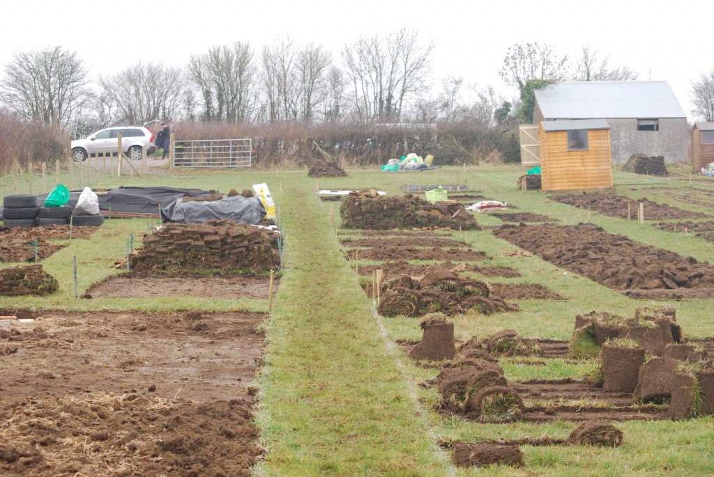 So many ways to lift the turf and create a new plot.Photo by Alistair Wood