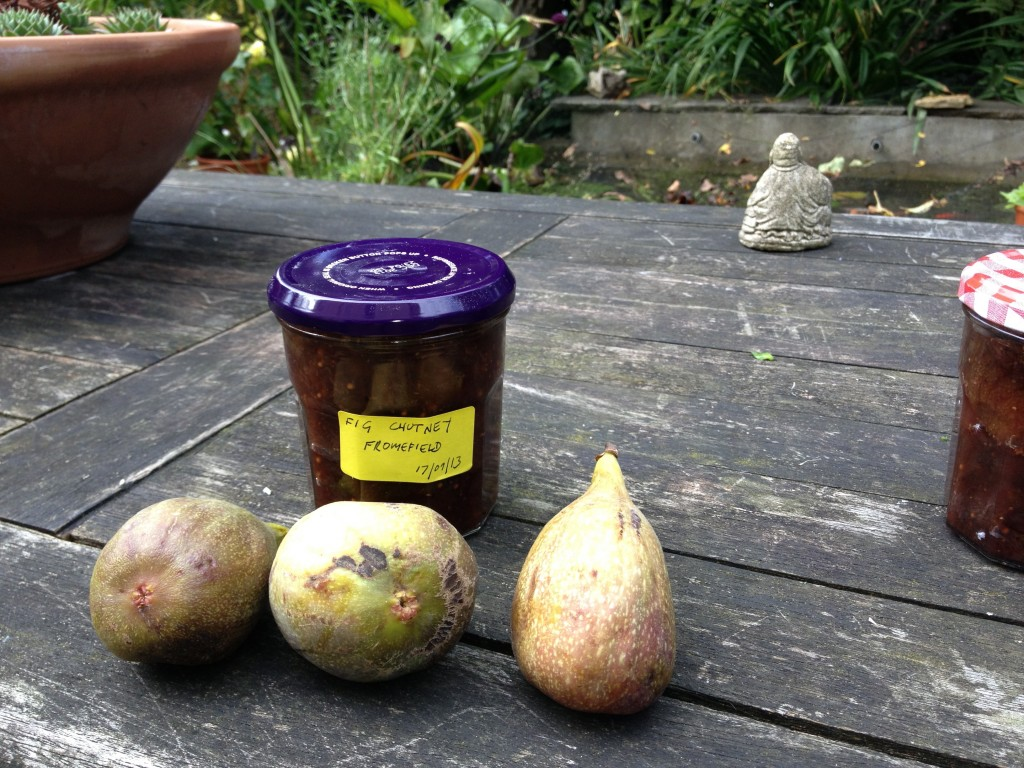 Fruit into jars: preserving the fig